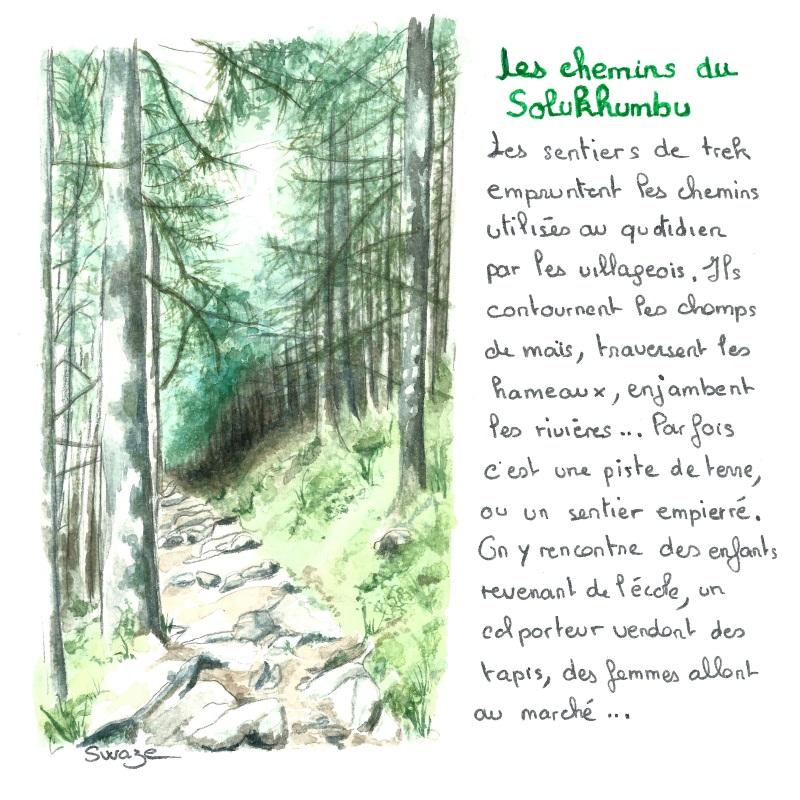 trek chemin forestier solukhumbu